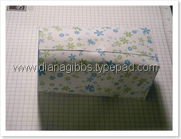 box in a bag tutorial 017