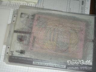 DSCN7098 copy