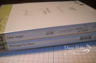DSCN0966 copy