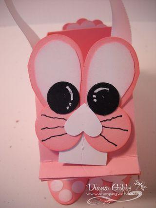 Elizabeth bunny closeup