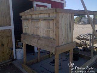 Chicken coop back side