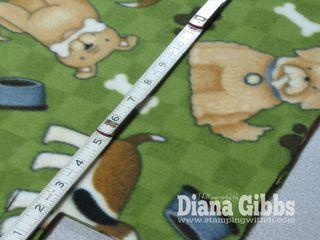Tobys Blanket 018 copy