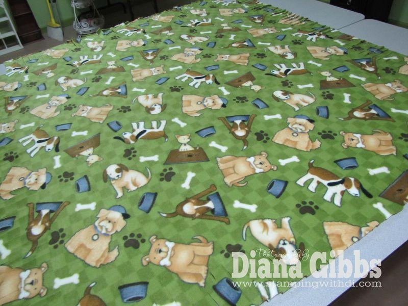 Tobys Blanket 019 copy