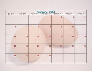 Chicken Calendar 8 x 11-005