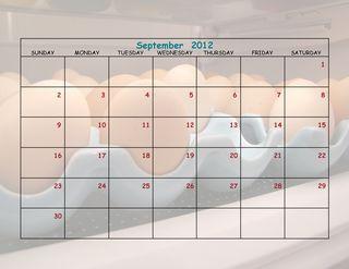 Chicken Calendar 8 x 11-019