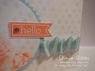 Watercolor Wonder Designer Note Cards & Envelopes Puckered ribbon