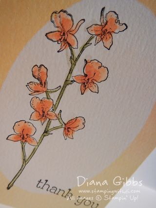 Spring Fling Watercolor Notecard close