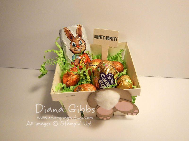 Easter Bunny Bum Berry Basket Diana Gibbs