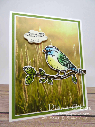 Best Birds Diana Gibbs Stampin' Up!