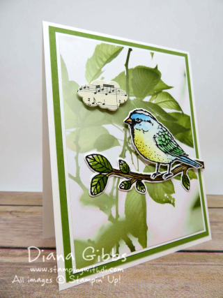 Best Birds Diana Gibbs Stampin' Up! orange