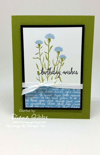 FaceBook Live Wild About Flowers Diana Gibbs Stampin' Up! Laura Barto case