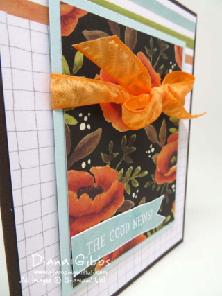 Hello Lovely Class Diana Gibbs Stampin' Up!