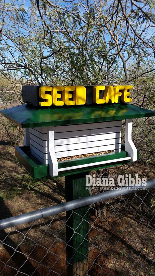 Seed Cafe by Jeff Gibbs