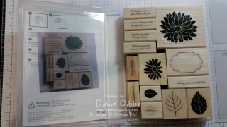 put pic inside case so you know how to put blocks away Diana Gibbs