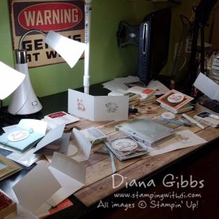 Behind the scenes Diana Gibbs