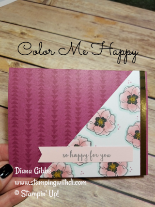 Color Me Happy Diana Gibbs Stampin' Up!