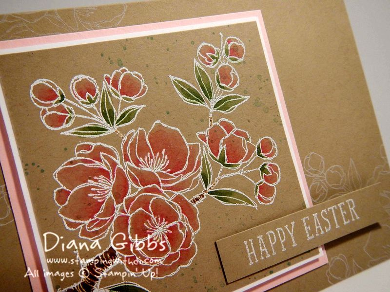 Indescribable Gift Diana Gibbs Stampin' Up!