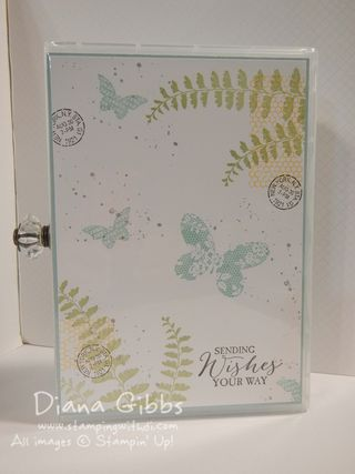 DiVa Day Diana Gibbs box cover