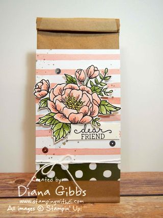 Class in the Mail Petite Cafe' Gift Bag Diana Gibbs Stampin' Up!