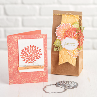 Special Reason Bundle Stampin' Up! Diana Gibbs
