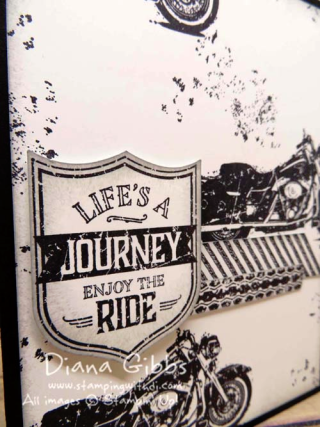 One Wild Ride Diana Gibbs Stampin' Up!