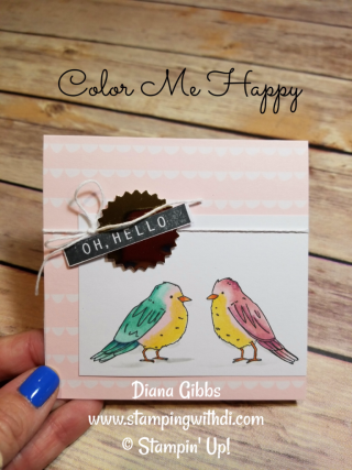 Color Me Happy Birds Diana Gibbs