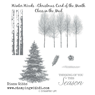 Winter wood stamp set www.stampingwithdi.com