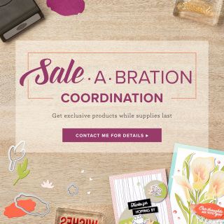 Sab coordination www.stampingwithdi.com