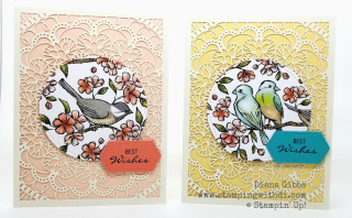 Bird Ballad Laser Cut card & tin www.stampingwithdi.com