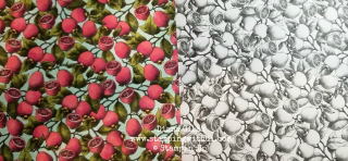 Botanical Prints DSP before and after www.stampingwithdi.com