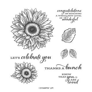 Celebrate Sunflowers Stamp Set www.stampingwithdi.com