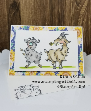 Way to Goat Teach Me Tuesdays with Diana Gibbs Episode 33 www.stampingwithdi.com