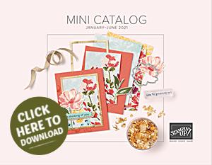 2021 Jan June Stampin Up Mini Catalog 2