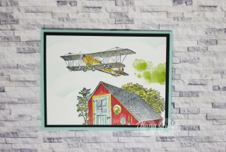 Soar Confidently stampingwithdi  https://www.stampingwithdi.com/2021/03/crop-duster-card.html