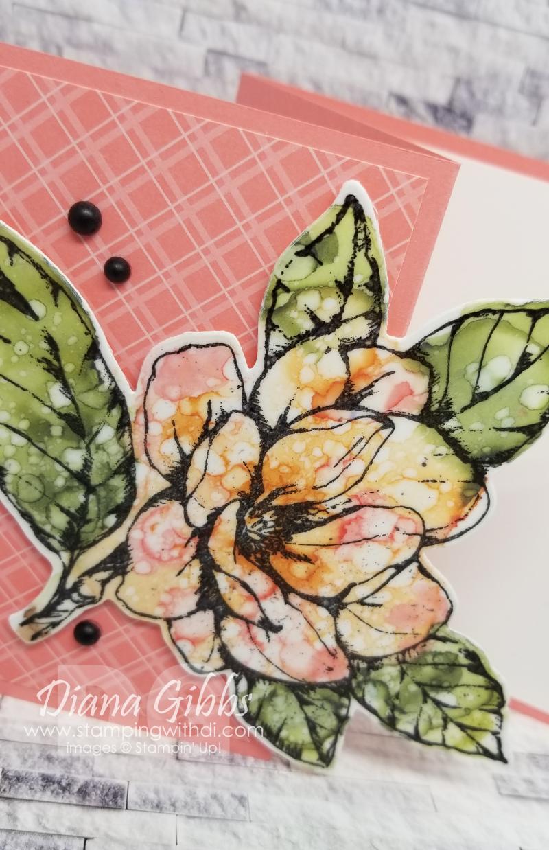 Magnolia close up stampingwithdi