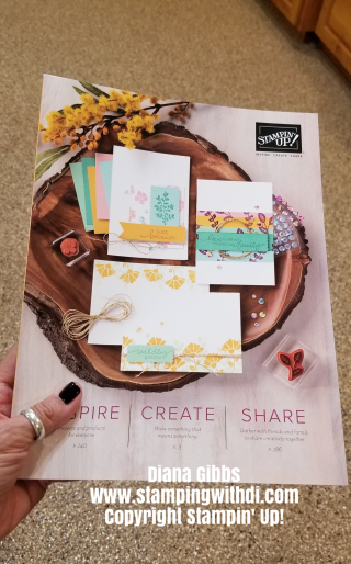 2020 - 2021 Stampin' Up! catalog www.stampingwithdi.com