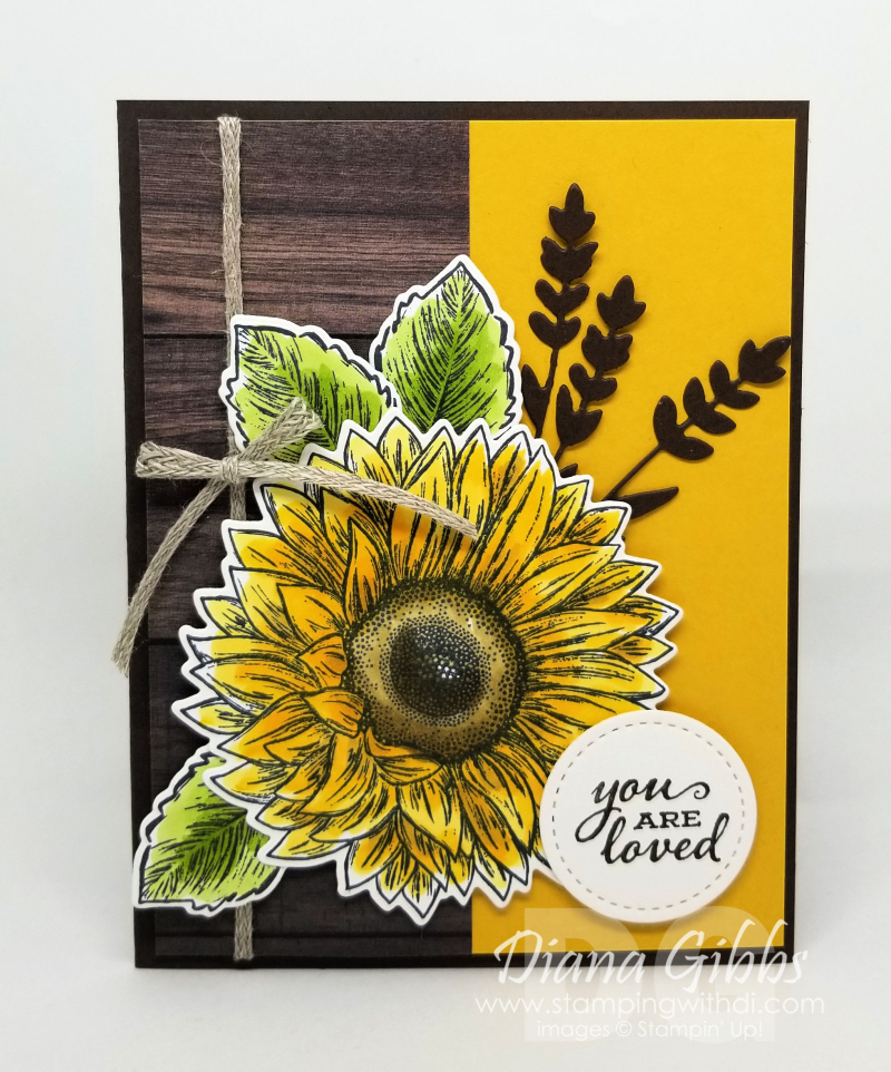 Celebrate sunflowers June class in the mail card (1)