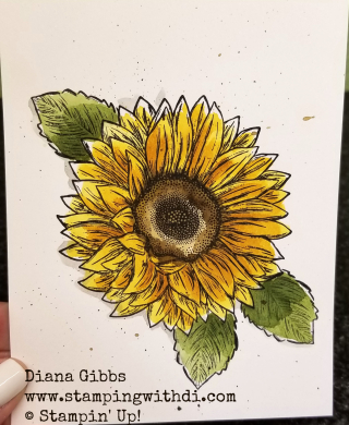 Celebrate Sunflowers Teach Me Tuesdays with Diana Gibbs www.stampingwithdi.com