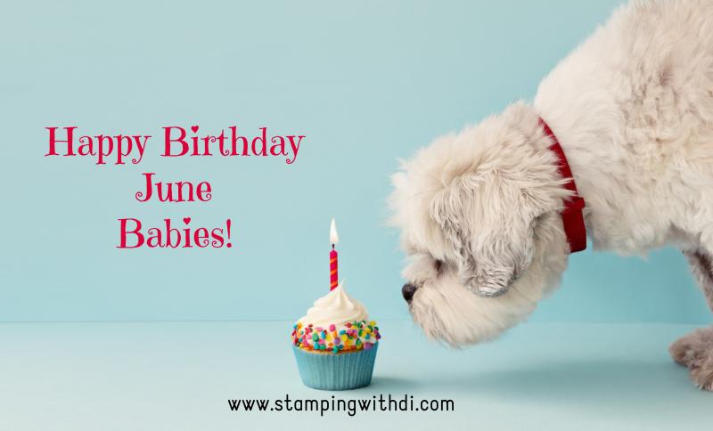 Birthday Dog June