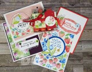 Sweet Strawberry Bundle & Berry Blessing Class stamping with di https://www.stampingwithdi.com/2021/06/junes-classes-in-the-mail-sign-up-extended-till-june-19.html