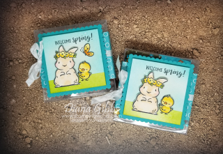 Springtime Joy Acetate Box stampingwithdi  https://www.stampingwithdi.com/2021/02/cute-little-welcome-spring-box.html