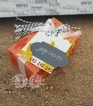 Perfect Parcel Die https://www.stampingwithdi.com/2021/03/how-to-make-a-box-with-the-perfect-parcel-die.html
