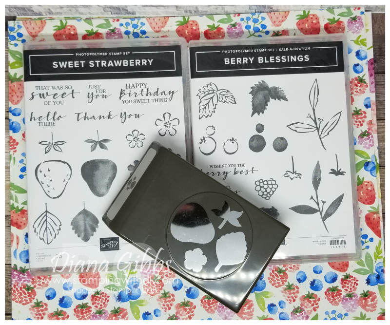 Sweet Strawberry Bundle & Berry Blessings Class stamping with di