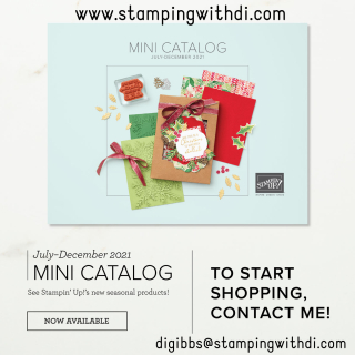 July - December Mini Catalog Cover Pic stamping with di (2)